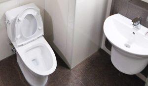 Toaletten ska bli skinande ren igen