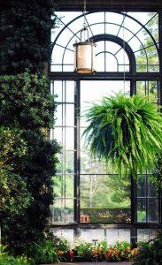 Ditt orangeri blir ett rum för både dig och dina växter.